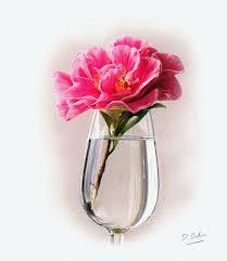 rose in glass study darren baker artist original paintings