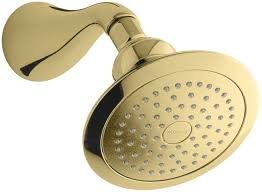 fresh polished brass shower head and arm 5703