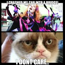 Grumpy Cat Meme Love - i love it grumpy cat know your meme