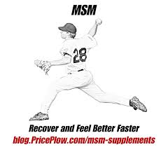 msm supplements joint support for athletes and aging