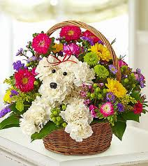 conroy flowers conroy s flowers orange county florist same day local delivery