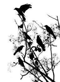 painterly processed image of crows in indian tree crows and