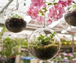 2018 hanging glass orb terrariums indoor plant hanging pots candle