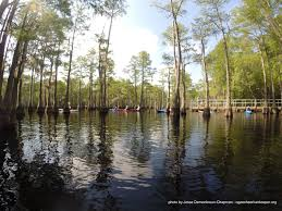 Seeking Director Ogeechee Riverkeeper Seeking New Riverkeeper Executive Director