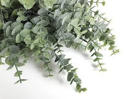 silver drop eucalyptus large eucalyptus bouquet faux eucalyptus spray silver dollar