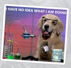 Chemistry Dog Meme - chemistry dog meme stickers pinterest
