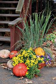 festive fall and winter containers state by state gardening web
