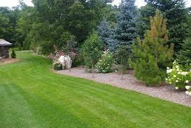 Privacy Garden Ideas Privacy Landscaping Ideas For Outdoor Home Design With Feature