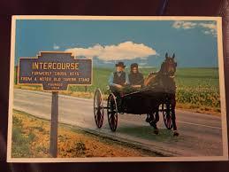 vintage pennsylvania amish buggy postcard dutch