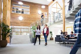 falmouth uni student numbers cap lifted business cornwall