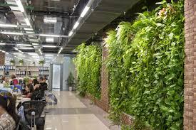 Indoor Garden by Almaty Entrepreneur Brings Indoor Gardening To Kazakhstan