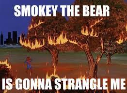 Smokey The Bear Meme - the best of 60s spider man meme spiderman bear meme and memes