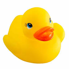 yellow rubber duckies birthday special occasions