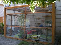 Patio Enclosure Kit by Best 25 Outdoor Cat Enclosure Ideas On Pinterest Catio Cat