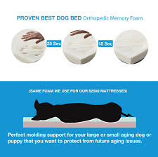 Costco Memory Foam Dog Bed Amazon Com Pet Support Systems Washable Orthopedic Memory Foam