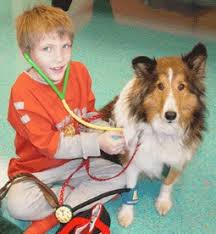 Comfort Dogs Certification Service Dog Or Therapy Dog Which Is Best For A Child With Autism