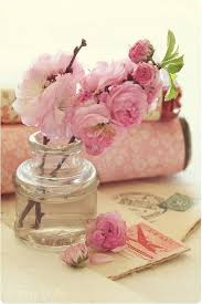 where to buy peonies boys don t buy roses beccaboo s kimblebee s