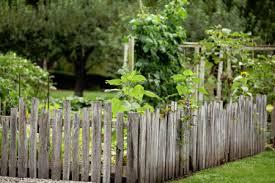 Backyard Fencing Ideas Choosing Option For Rustic Backyard Fence Ideas Homescorner Com
