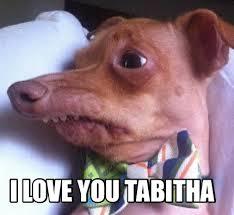 Advice Dog Meme Generator - meme creator retarded dog meme generator at memecreator org