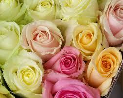 Bouquet De Bonbons Aquarelle by Top 10 Des Meilleurs Sites Pour Acheter Des Fleurs En Ligne Topito
