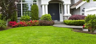 Residential Landscaping Services by Lawn Service Visalia Landscape Service Vizcarra Lawn Service