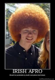 Meme Joke - irish afro redhead afro meme joke lol funny ireland before you die