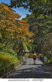 Largest Botanical Garden by Wellington Botanical Garden Stock Images Royalty Free Images