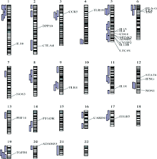 Chromosome Map Gene Environment Interactions And Airway Disease In Children