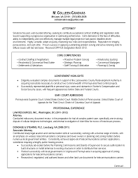 Sample In House Counsel Resume by Document Review Attorney Objective Volunteer Manager Resume