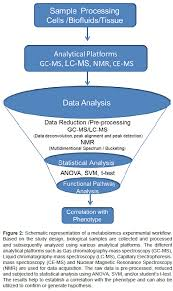 metabolomics approaches and applications to diabetes research