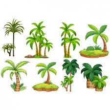 palm trees designs collection vector premium