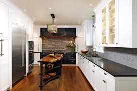 Black And White Kitchen Transitional Kitchen by Cabinets U0026 Drawer Transitional Cabinets Black Gloss Kitchen