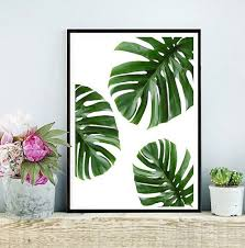 green wall decor tropical leaf printable art monstera leaves tropical leaves