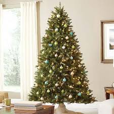 find all types of trees at the home depot
