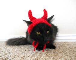 cat halloween costume cat costume witch hat pet costume