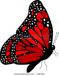 side view of butterfly stock images royalty free images vectors