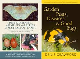 Garden Pests Identification - get to know your garden critters organic gardener magazine australia
