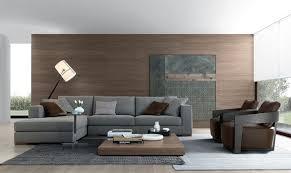 salon avec canapé gris salon avec canapé gris intérieur déco