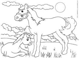 farm and baby animals coloring pages cows horses ducks kinderart