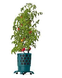 gardener u0027s revolution honeycomb tomato planter kit