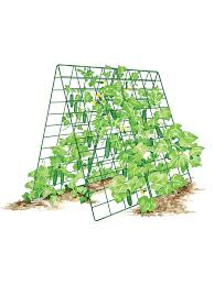 amazon com deluxe cucumber trellis trellises garden u0026 outdoor