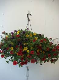 flower baskets hanging flower baskets draper flowerpros draper ut