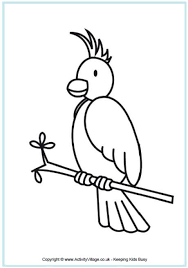 9 resource colouring pages australia images