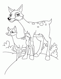 fawn coloring pages coloring