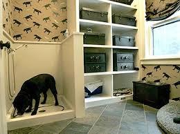 cool bathroom ideas 17 insanely cool bathroom ideas for your doggies amazing diy