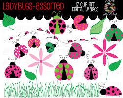 ladybug clipart pink ladybug clipart ladybug clip art ladybug