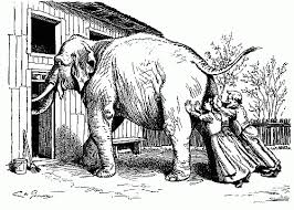 Poem The Blind Man And The Elephant The Elephant Effect