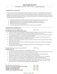 view basic resume sles typical marketing director resume objective executive director