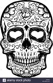 sugar skull isolated on white background day of the