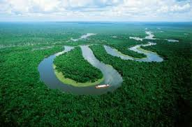 amazon basin the amazon rainforest biology of tropical rainforests